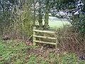 Double Stile through hedge, near Gotteridge - geograph.org.uk - 1150243.jpg