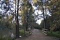 Dubbo NSW 2830, Australia - panoramio (161).jpg