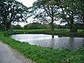 Duck pond at Cross House - geograph.org.uk - 1001052.jpg