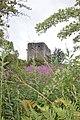 Dundonald Castle 48.jpg