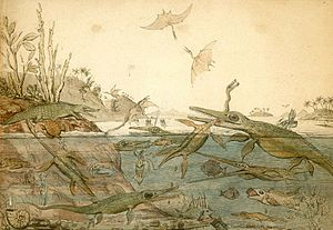 Henry De la Beche - Duria Antiquior – A more Ancient Dorset is a watercolor painted in 1830 by Henry De la Beche, based on fossils found by Mary Anning