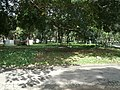 ESCULTURAS NO PARQUE DA LUZ (13) - panoramio.jpg