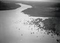 ETH-BIB-Ufer des Tschadsees-Tschadseeflug 1930-31-LBS MH02-08-0974.tif