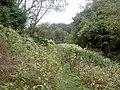 Eaves Brook - geograph.org.uk - 557512.jpg