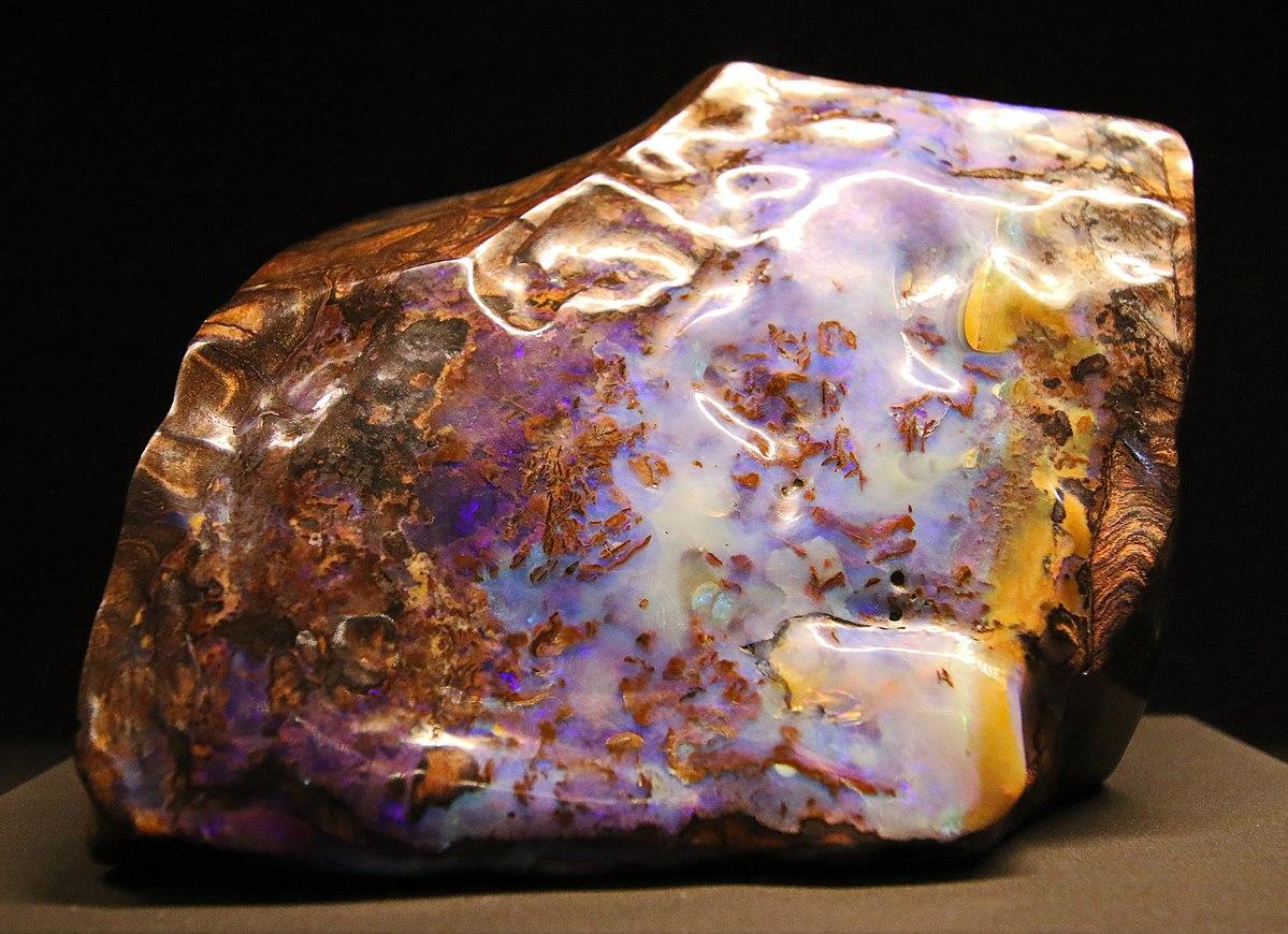 Afbeeldingsresultaat voor versteend hout opaal