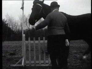 File:Een imitatie van Charlie Chaplin-510950.ogv