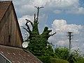 Efeu - panoramio.jpg