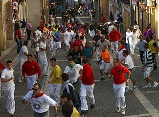 Encierro de Cuéllar en la calle de las Parras (2010).jpg