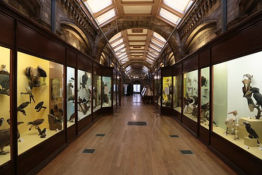 Entrance to the birds gallery at the Natural History Museum, London