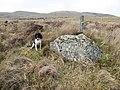 Erratic boulder - geograph.org.uk - 1235669.jpg