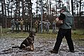 European enlisted leaders attend first sergeant symposium 150223-F-NH180-156.jpg
