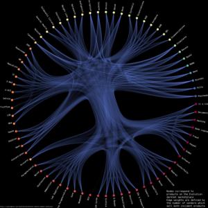 Darknet market - Image: Evolution vendor category relationships