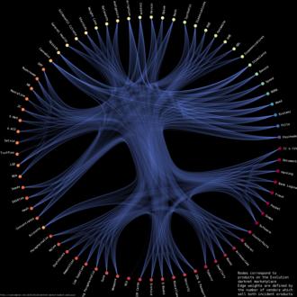 Evolution (marketplace) - Image: Evolution vendor category relationships