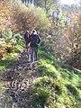 Exmoor , Muddy Path - geograph.org.uk - 1136429.jpg