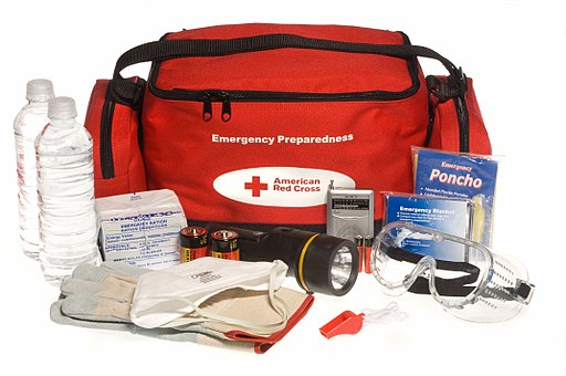 "FEMA - 37174 - Emergency Preparedness ""ready to go"" kit."