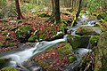 Fall Creek (Revisited) (11) (11659739145).jpg