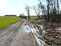 Farm road from Butterwick Moor Farm - geograph.org.uk - 150237.jpg