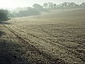 Farmland, Ewelme - geograph.org.uk - 1082156.jpg