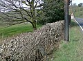 Farmland by the A482 near Pumsaint, Carmarthenshire - geograph.org.uk - 1221510.jpg