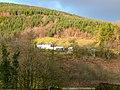Fforest Blaen Rhisglog- Blaen Rhisglog Plantation - geograph.org.uk - 1133068.jpg