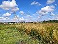 Field near the village of Toisi, Batyrevo, Chuvashia.jpg