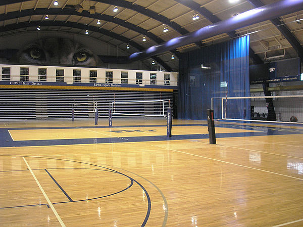 Volleyball courts in Fitzgerald Field House FitzgeraldFieldHouseCourts.jpg