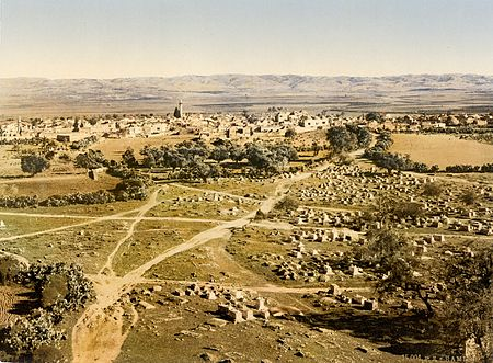 The town of Ramla and its surroundings in 1895. The Jarrahids under Mufarrij ibn Daghfal and his son Hassan intermittently governed, controlled or plundered Ramla in the late 10th and early 11th centuries Flickr - ...trialsanderrors - View from Tower of the Forty Martyrs, Ramleh, Holy Land, ca. 1895.jpg