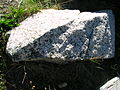 Flickr - brewbooks - Granite - Golden Horn Batholith (1).jpg