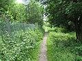 Footpath, River Eden - geograph.org.uk - 857204.jpg