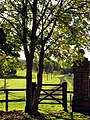Footpath at Watscombe Estate Entrance - geograph.org.uk - 74099.jpg