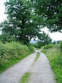 Footpath between Usk Castle and Castle Farm - geograph.org.uk - 478695.jpg