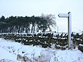 Footpath to Snowland - geograph.org.uk - 649936.jpg