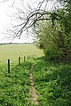 Footpath towards Milton Park Wood - geograph.org.uk - 408713.jpg