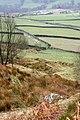 Footpath up Blakey Ridge - geograph.org.uk - 753165.jpg