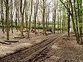 Forestry equipment in Bottom Wood - geograph.org.uk - 1141993.jpg