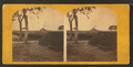 Fortress Monroe - the gun yard, from Robert N. Dennis collection of stereoscopic views.png