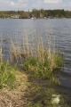 Freiensteinau Nieder-Moos Nieder-Mooser-Teich-bank o lake S.png