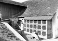 Frischfleischhaltung - CH-BAR - 3240119.tif