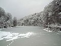 Frozen lake in Dognecea mountains.jpg