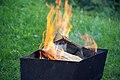 Fuego (8439433740).jpg