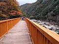 Fukuchiyama Line old route Mukogawa Valley (31014824461).jpg