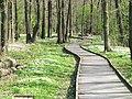 Gångväg i trä i Ryaskogen, Göteborg 2011 - panoramio.jpg