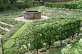 GW Gardens.jpg