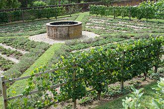 Mount Vernon - GW Gardens