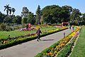 Garden - Agri-Horticultural Society of India - Alipore - Kolkata 2013-02-10 4806.JPG