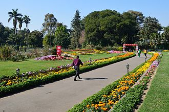Botanical Survey of India - Garden at Agri Horticultural Society of India in Kolkata, a Botanical Survey of India garden.