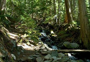 Garibaldi National Park - Garibaldi Mountain.jpg