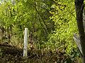 Garten Fröschlgasse 14B.jpg