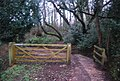 Gate, Thorncombe Lane - geograph.org.uk - 1657260.jpg