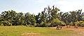 Gehege der Przewalski-Pferde im Wisentgehege Springe.jpg
